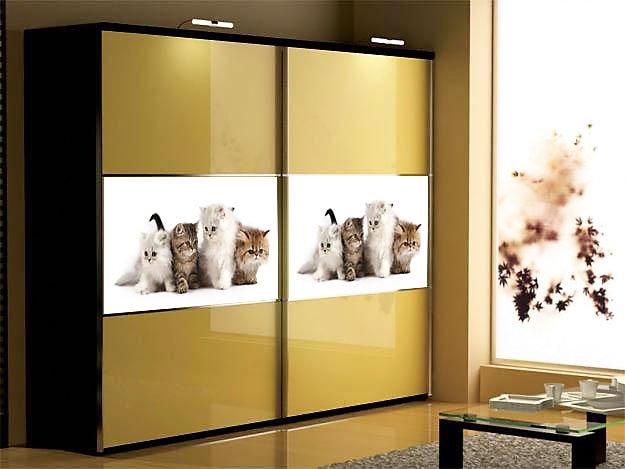 Каталог популярных моделей шкафов купе (фото) - Вариант 6
