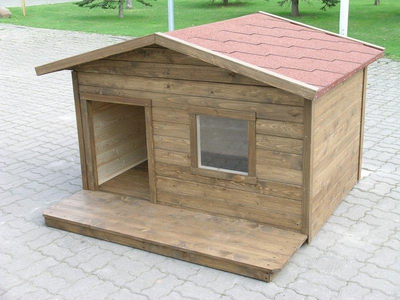 Надежная будка для собаки своими руками: размеры и чертеж полноценного проекта